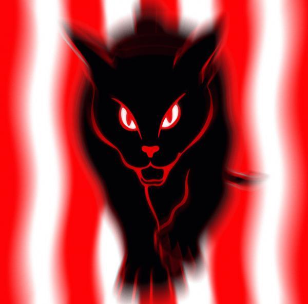 safc black cats